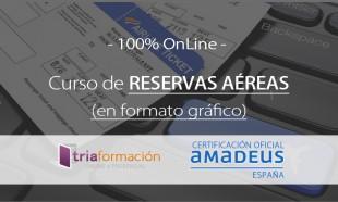 Curso Amadeus Reservas Aereas grafico
