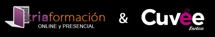 Logos video v1